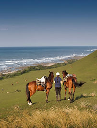 A girl stood on a hill, holding two horses and looking out to sea.