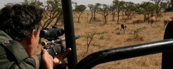 Wild Inside Adventures Veterinary Volunteer Programme South Africa WildlifeWork GameCapture Vet