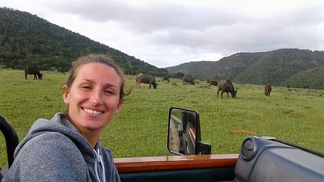 A volunteer smiling in a game viewing landrover with a herd of buffalo behind her.