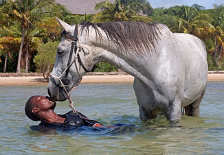 A man in the sea with his horse, kissing the horse.