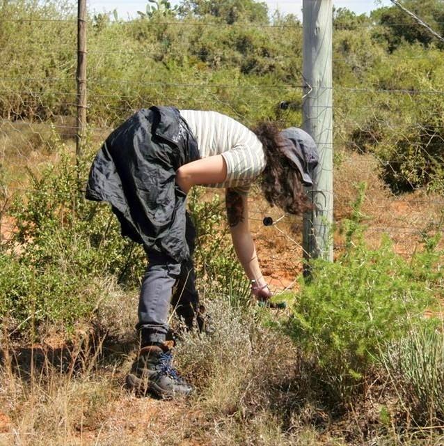 Monitoring Plant Species