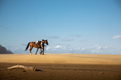 A woman leading a horse along the beach.