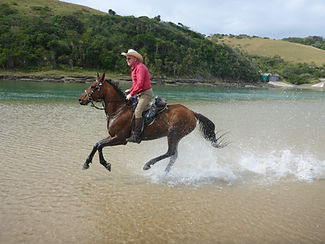 A man on a horse cantering through Kei Mouth River