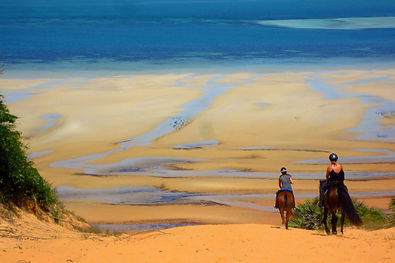 Two riders and their horses heading down a red sand dune towards the sea.