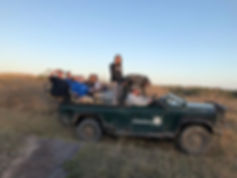 Wild Inside Adventures Veterinary Volunteer Programme South Africa Game Vehicle.