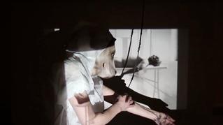 Guelra | Cristina Mendanha |     gntration |7 to 12 May