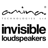Amina logo.png