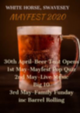 MAYFEST 2020.png