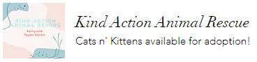 Kind Action Animal Rescue.PNG