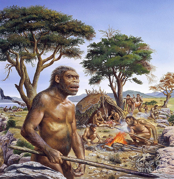 tribe-of-homo-erectus-publiphoto.jpg
