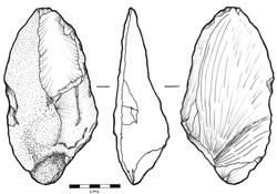 Onil figura 1.jpg