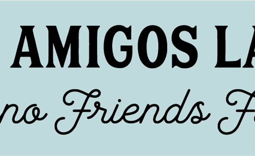The DOVE Project partners with Fondos Amigos Latinos