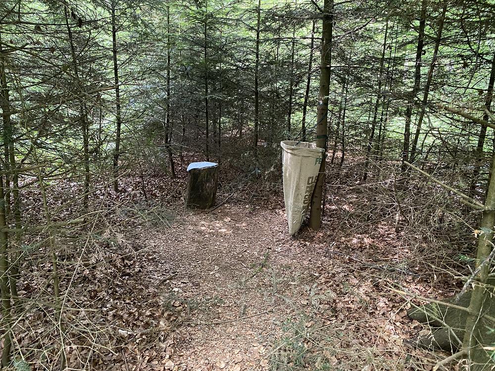Mägenwiler Wald Abfall schwulenwäldli