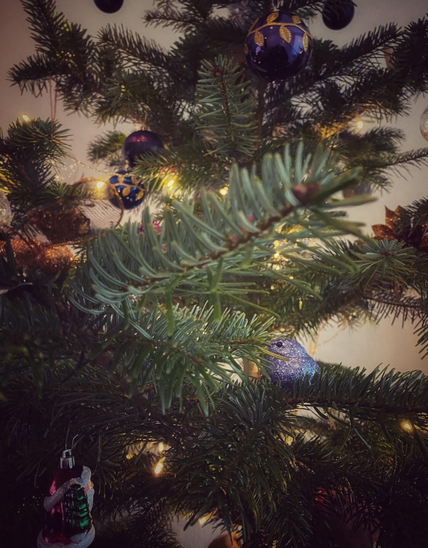Adventszeit Schweiz Weihnachten