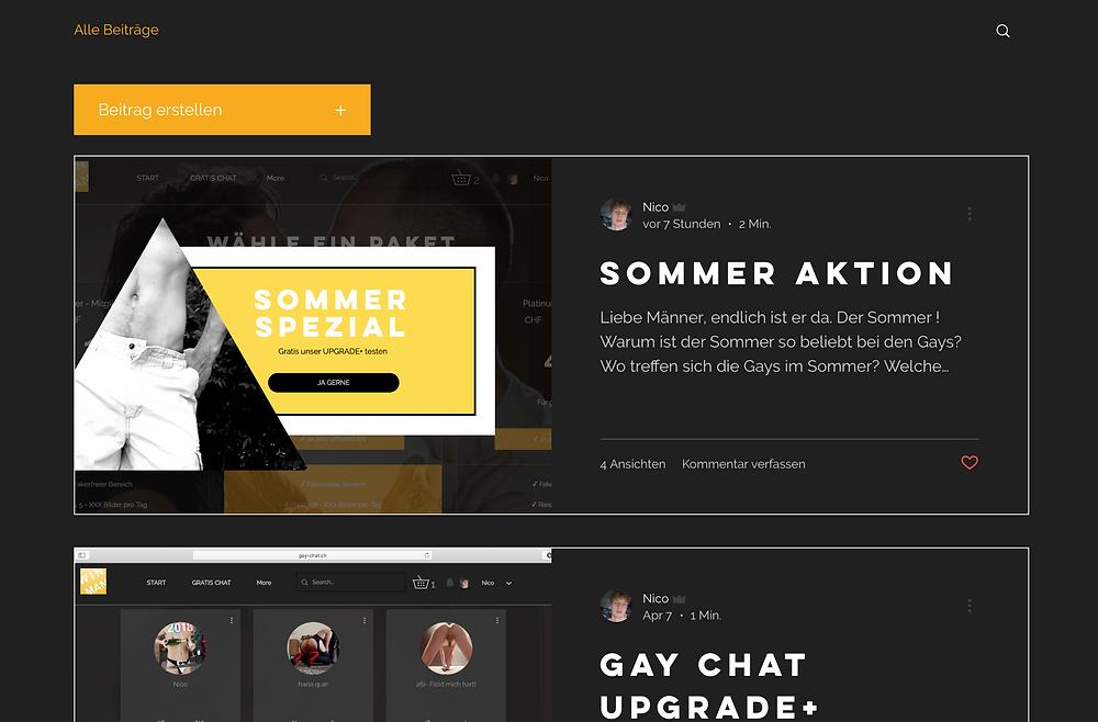 Schweizer Gay Chat - schwulen Chat