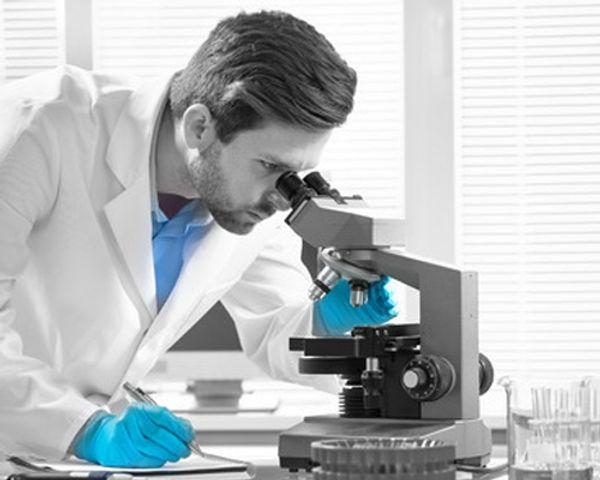Penisvergrösserung BigBoxerBox Forschung und Wissenschaft
