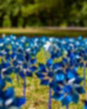 Pinwheels commemorating Child Abuse Prev