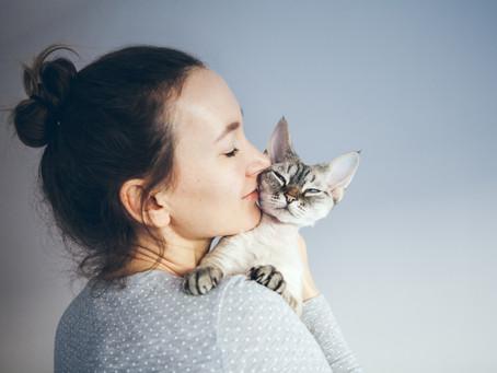 Tierschutz und Kosmetik