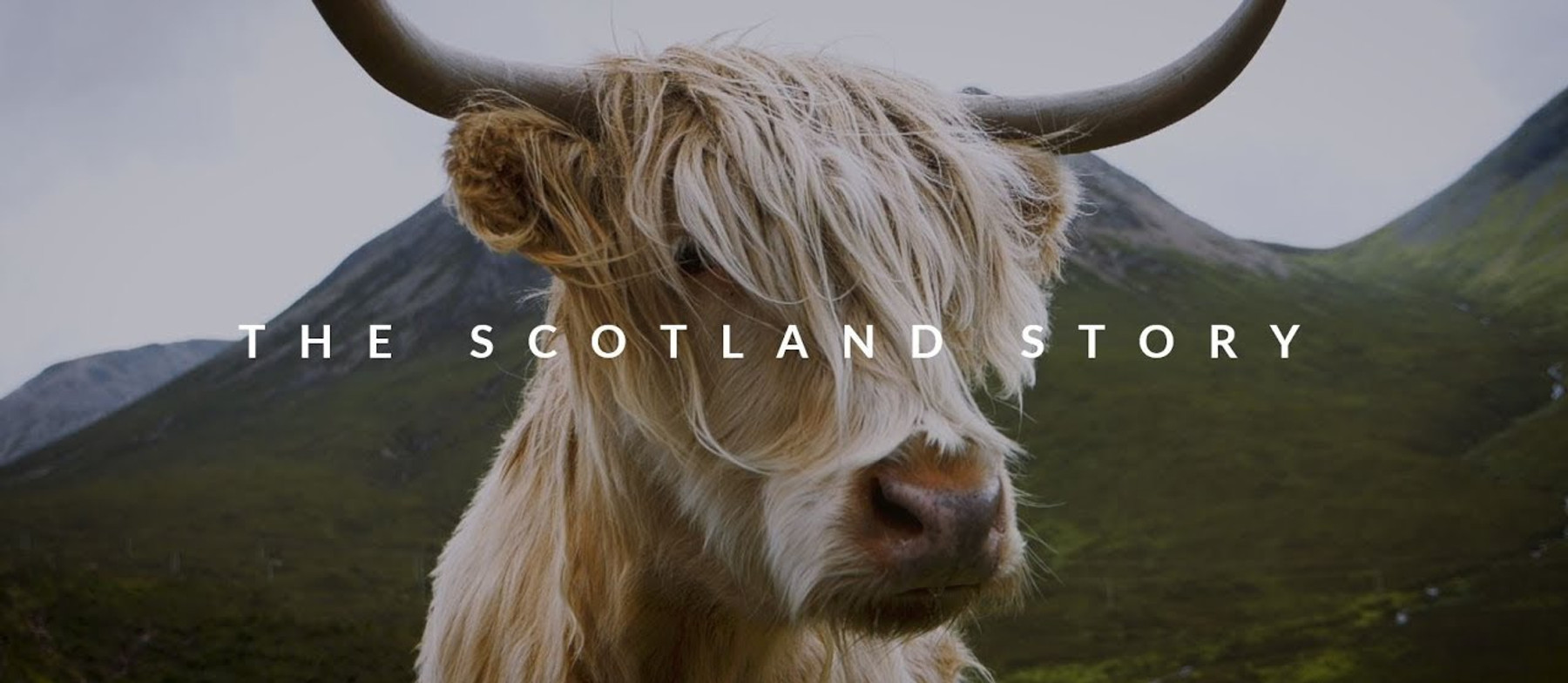 The Scotland Story