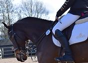Nici Bartropp Equestrian Instructor