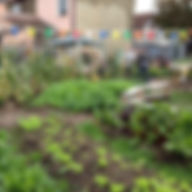 21 Flanders Field Community Garden.jpg