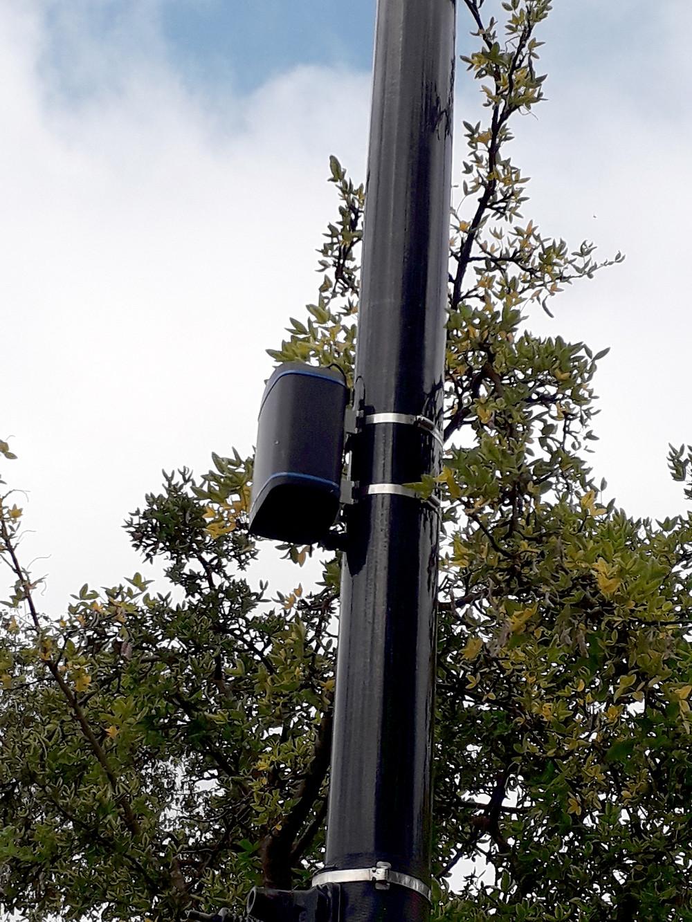 A Zephyr® sensor on a lamp post