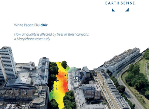 White Paper Published | Air Quality Affected by Trees in Real Street Canyons