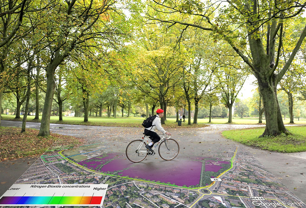 Man on bicycle cycling through a park