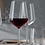 Thumbnail: Style - Red Wine Glass by Spiegelau
