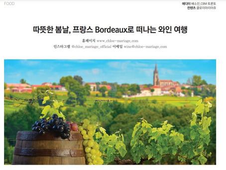 따뜻한 봄날, 프랑스 Bordeaux로 떠나는 와인 여행