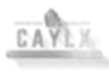 logocayx.png