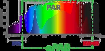 ILUMINAR-Lighting-ePAR.webp