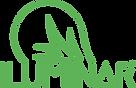 ILUMINAR-Logo-new.png