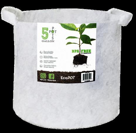 Eco Pot (1).png