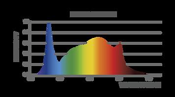 iL8x Spectrum-02.png