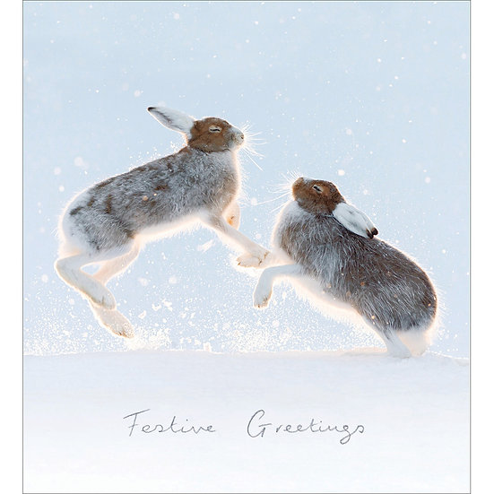 Charity Card Pack Hares