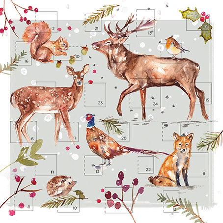 Advent Calendar Winter Wildlife