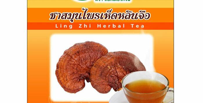 Dr. Green 100% Natural Organic Tea Lingzhi Mushroom - Reishi Tea