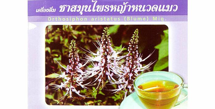 Dr. Green 100% Natural Organic Tea Cat's Whisker - Ortosiphon