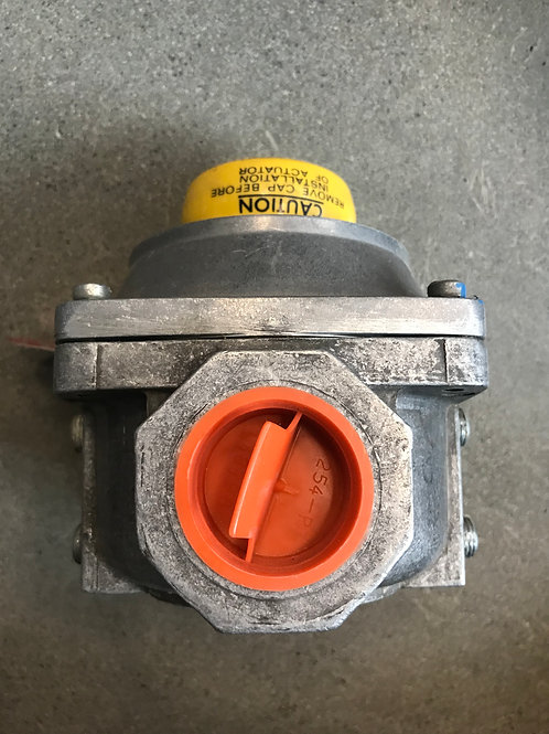 GENERAL CONTROLS Gas Valve Assembly