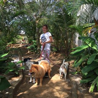 Salón para mascotas Aquabarra (2) .JPG