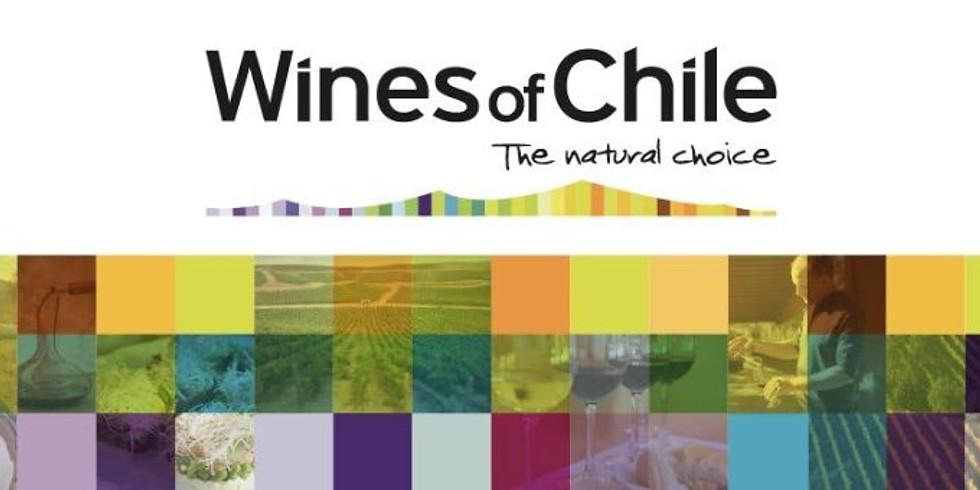 Wines of Chile   Feira de Vinhos