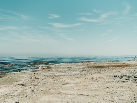 Salton Sea circa 2020 – Another Decade of Delusion While the Sea Dries Up