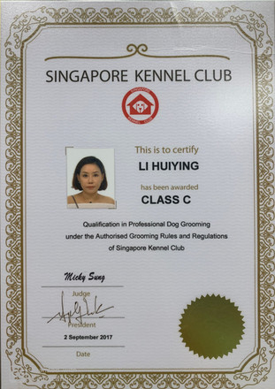 Li Huiying Class C Lvl Cert.jpg