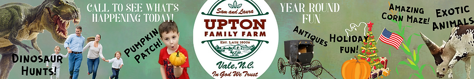 UPTON BANNER.png