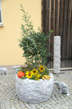 KreisgartenbautagZedtwitz9
