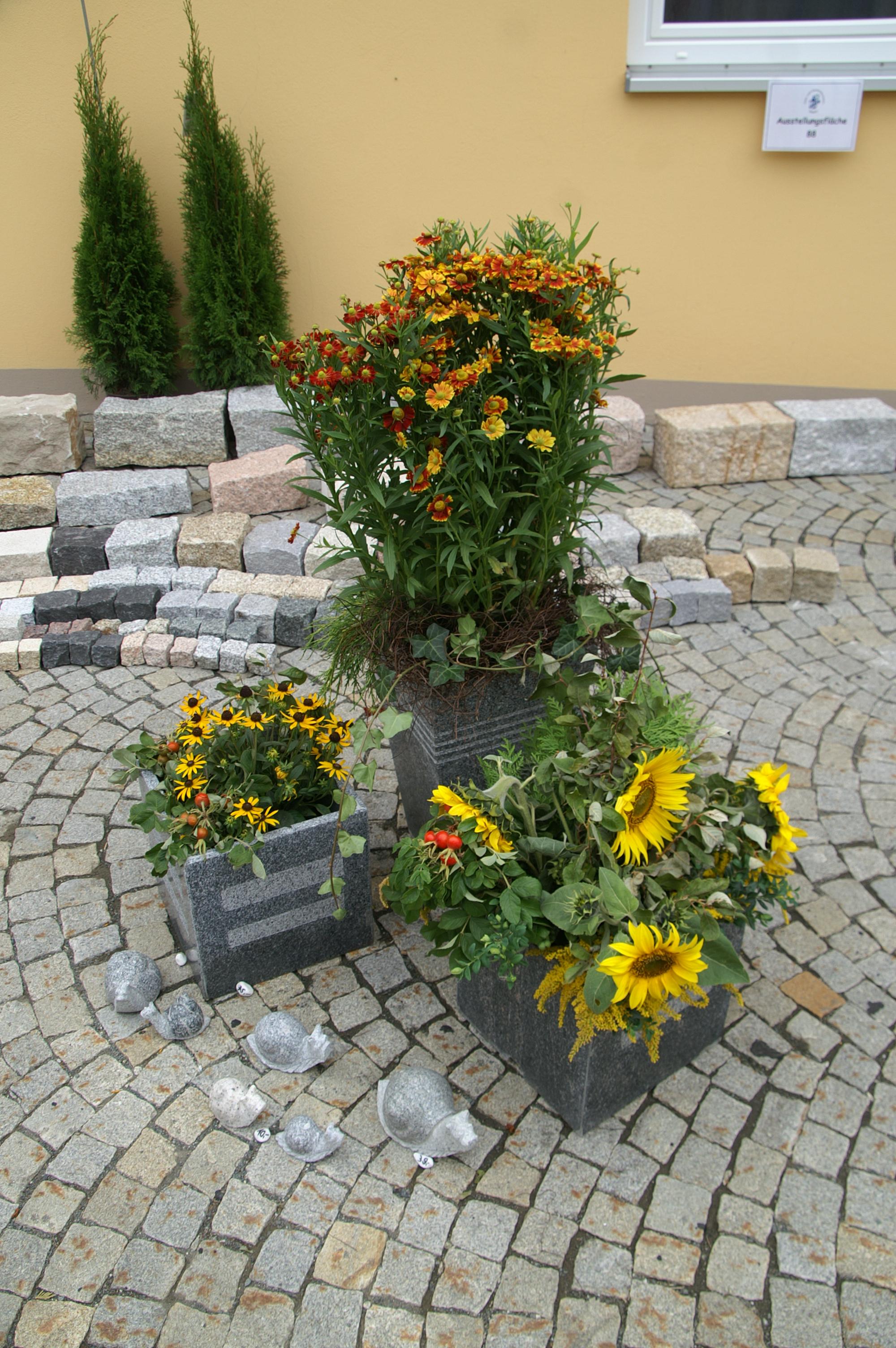 KreisgartenbautagZedtwitz7