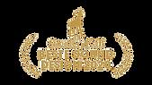 Laureaat Gouden Kalf 2020 PS.png