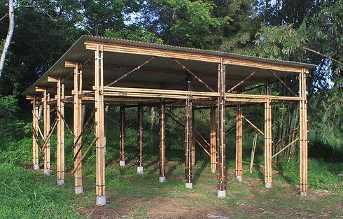 bamboo_carport.jpg