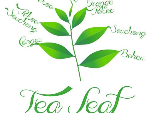 Tea Art - Tea Leaf